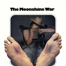 Movies You Would Like to Watch If You Like the Moonshine War (1970)